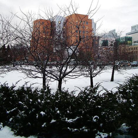 Stata_center_in_the_snow
